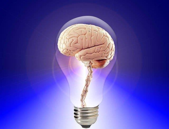 Formation mentalisme professionnel
